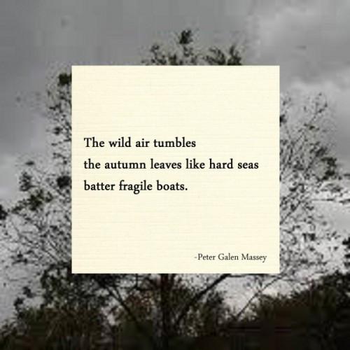 Haiku - The wild air tumbles / the autumn leaves like hard seas / batter fragile boats.