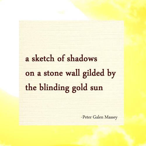 sketch of shadows haiku massey