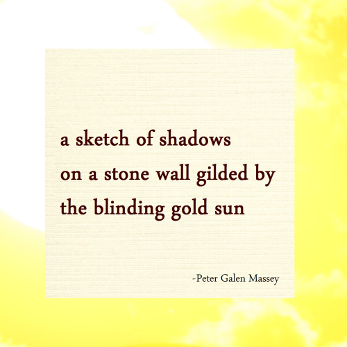 sketch of shadows haiku massey