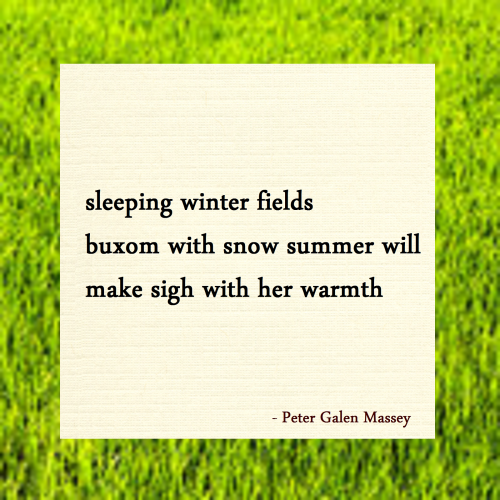 Fields Buxom With Snow Haiku Massey