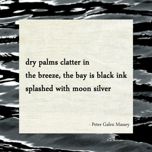 Splashed with Moon Silver Haiku Peter Massey