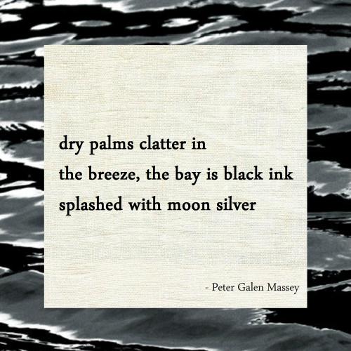 Splashed with Moon Silver Haiku Peter Massey