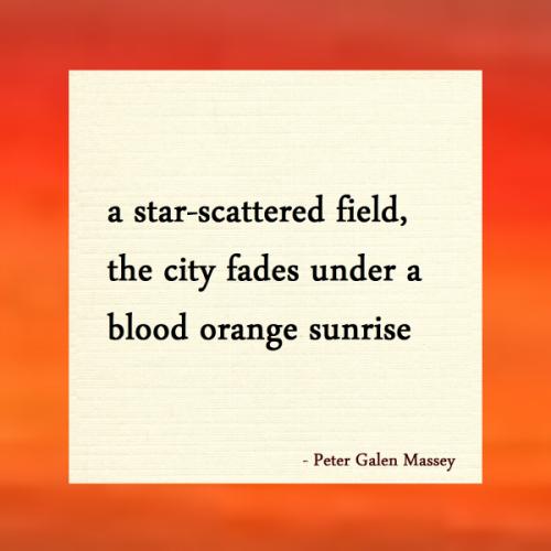 Star-Scattered Field Haiku Peter Massey
