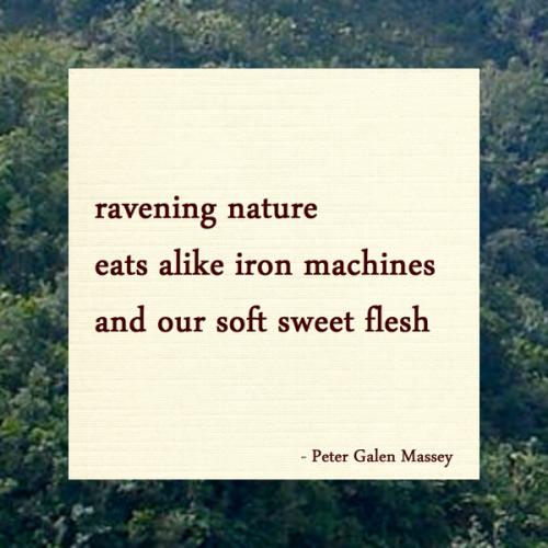 Our Soft Sweet Flesh - Jamaica Haiku Peter Massey