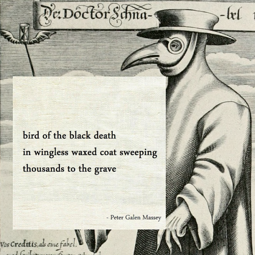 Bird of the Black Plague Haiku Peter Massey