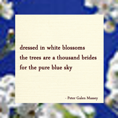 A Thousand Brides Haiku Peter Galen Massey