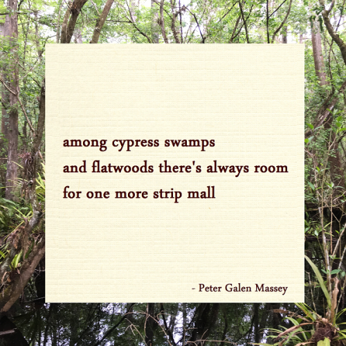 Haiku Peter Massey Room For One More Strip Mall
