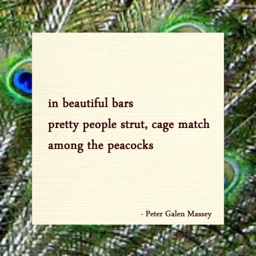 Haiku Peter Galen Massey Pretty People Strut