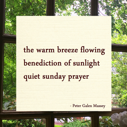 Haiku Peter Massey Benediction of Sunlight