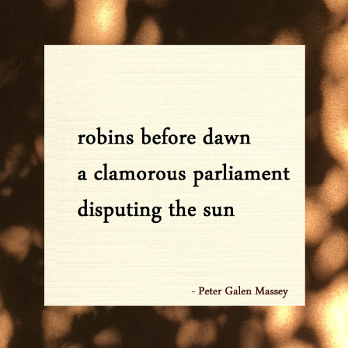 Haiku Peter Massey A Clamorous Parliament