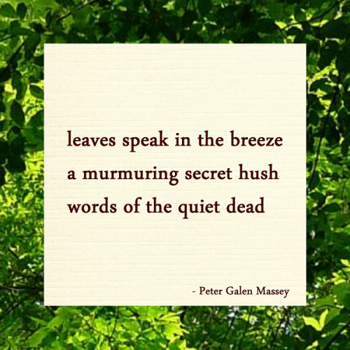 Haiku Peter Galen Massey Words of The Quiet Dead