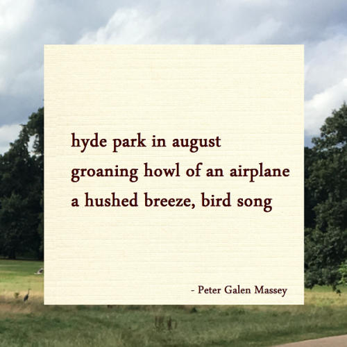 Haiku Peter Galen Massey Hyde Park in August