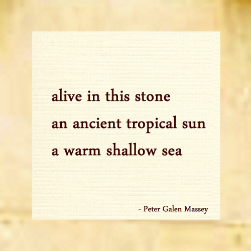 Haiku 136 Alive in This Stone