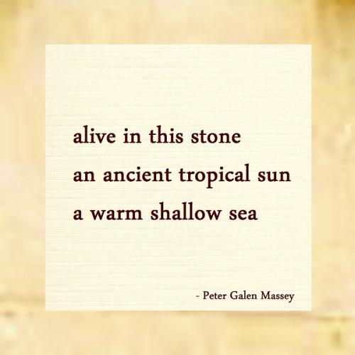 Haiku 136 Alive in This Stone