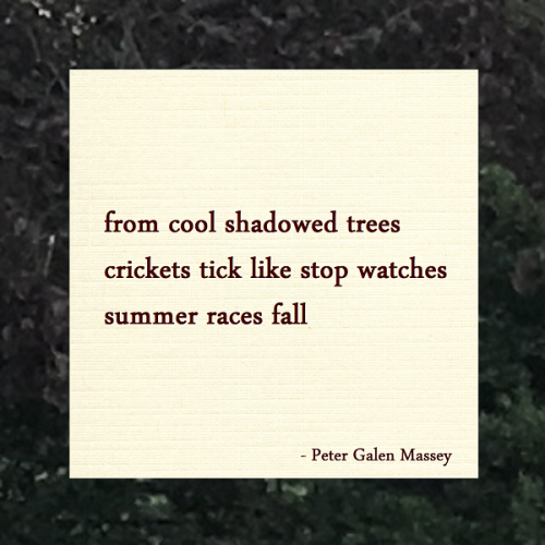 Haiku Peter Galen Massey Crickets Like Stop Watches