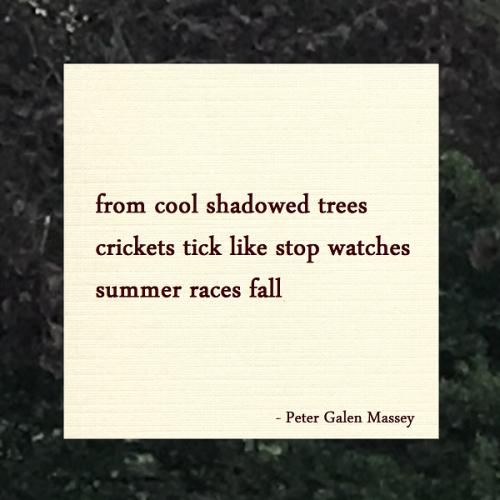 Haiku Peter Galen Massey Crickets Like Stop Watches