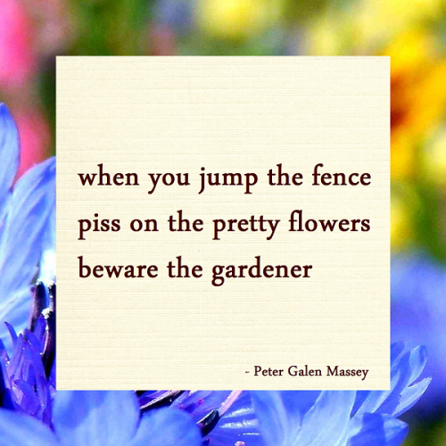 Haiku Massey when you jump the fence / piss on the pretty flowers / beware the gardener