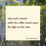 "Haiku ""why such a hurry"" Peter Galen Massey"