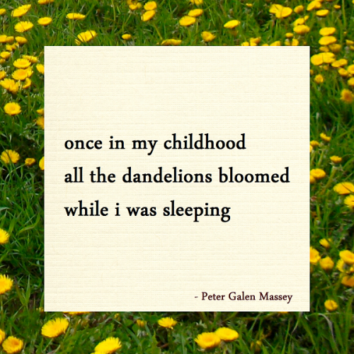 Haiku once in my childhood all the dandelions bloomed while i was sleeping peter galen massey