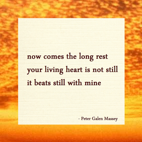 haiku poem now comes the long rest your living heart is not still it beats still with mine peter galen massey